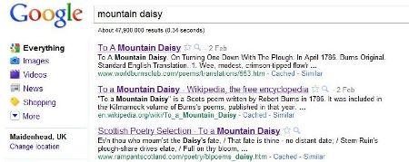 to a mountain daisy robert burns