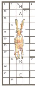 golden-hare-running-down-the-grid
